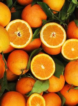 high-quality-fresh-oranges-1502826793-32