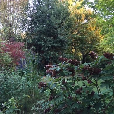 giardini lago 2.jpg
