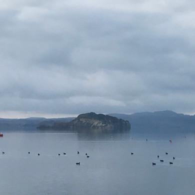 brume lago.jpg