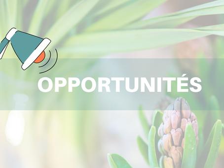 Des opportunités dans le secteur