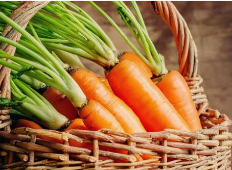 Die Karottenfaser: entdecken Sie einen natürlichen Strukturverbesserer