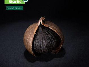 Black Garlic the big food trend 2021!?