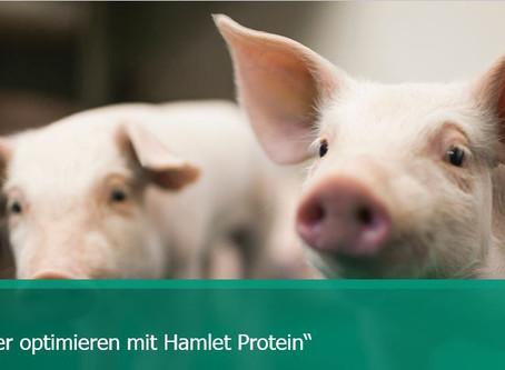 Für die Kleinsten ist Hamlet Protein das Grösste