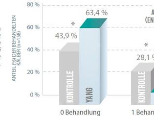 YANG - Gesundheit & Leistung von Wiederkäuern von Anfang an fördern