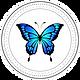 logo1ok.png