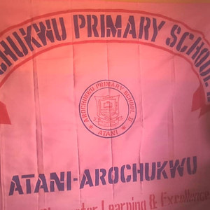 Arochukwu Primary School 2