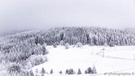 Un manteau blanc