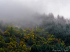 Brume matinale en Ardèche