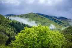 Temps pluvieux dans les Monts d'Ardèche