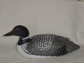 'Common loon' in basswood