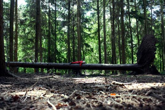 Reflections Forest School stillness (1).