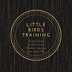 little birds training-3.png