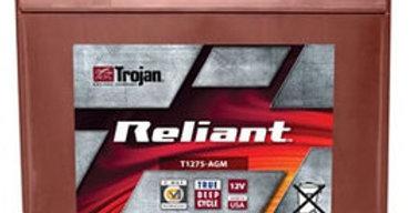 Тяговый аккумулятор Trojan T875-AGM