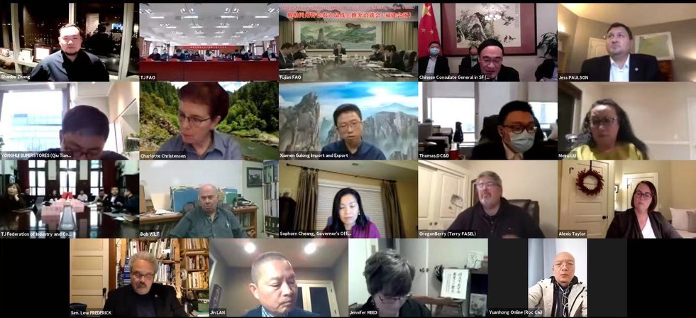 Web-conference photo (partially view)