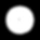 SBBirths_SocialMediaIcons_white-01.png