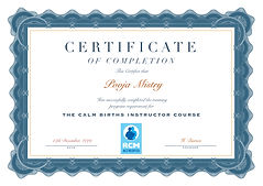 CB Certificate.jpg