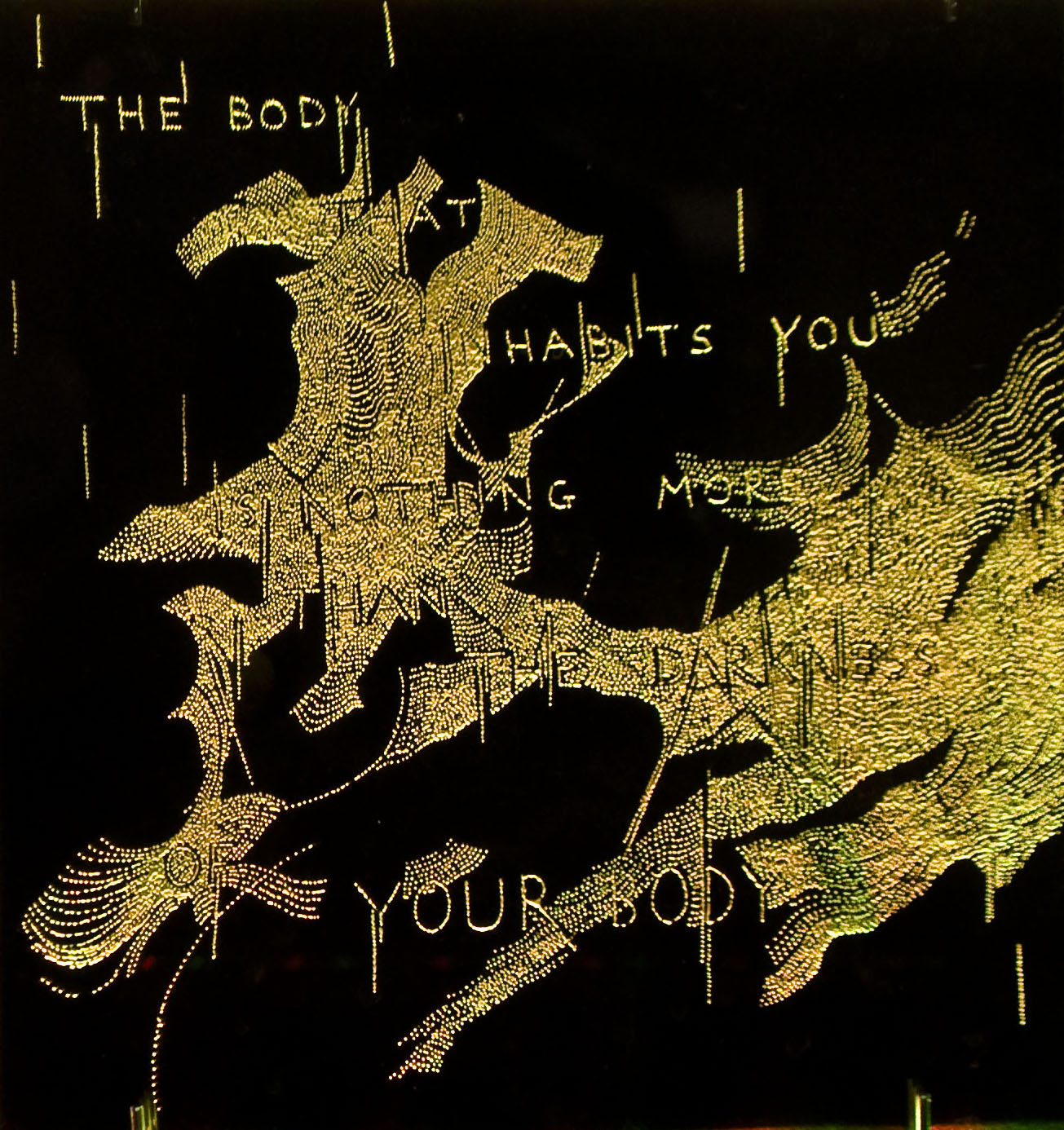 """The Body That Inhabits You Is Nothi"