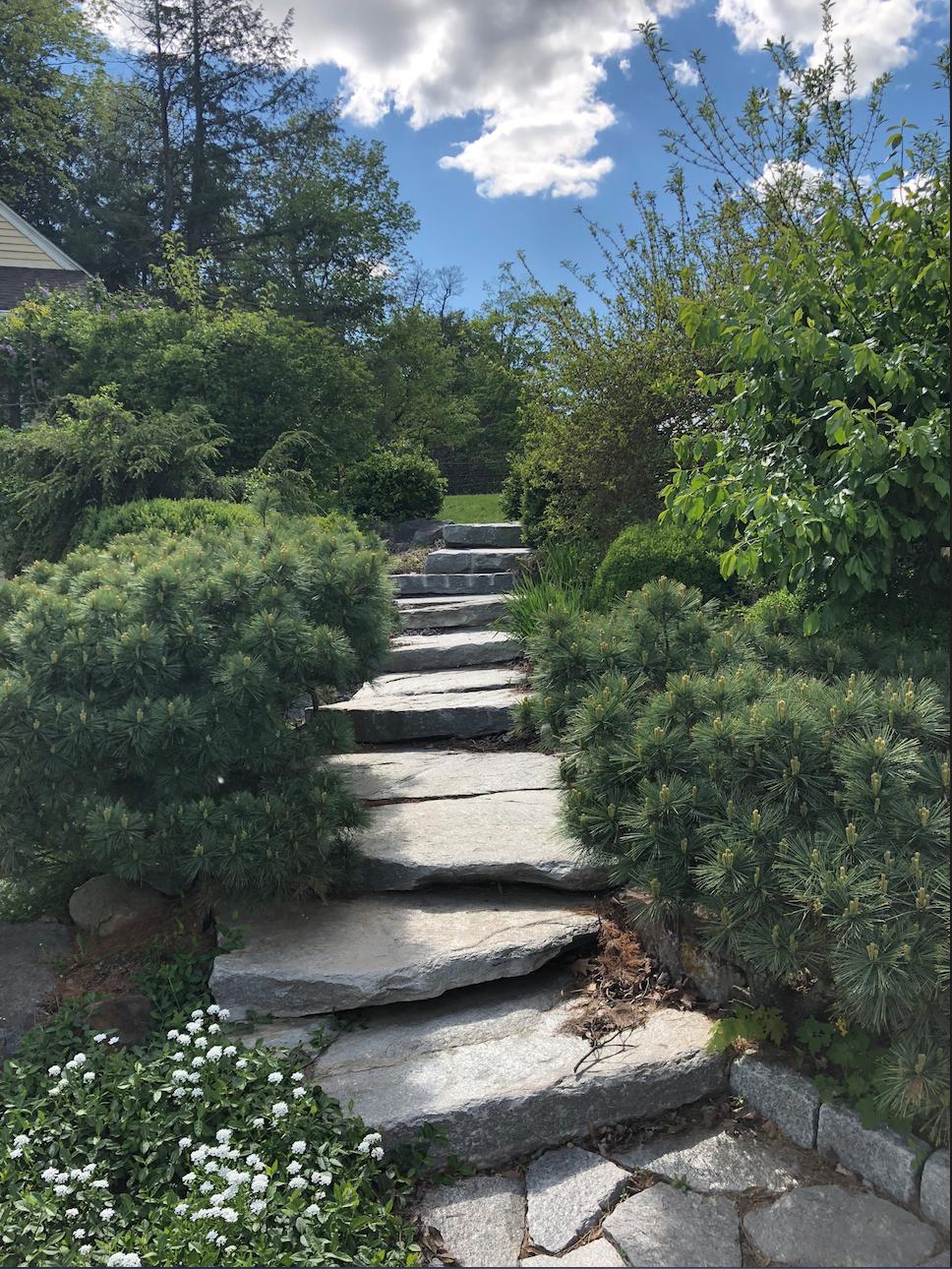 WBF Bonzai Staircase