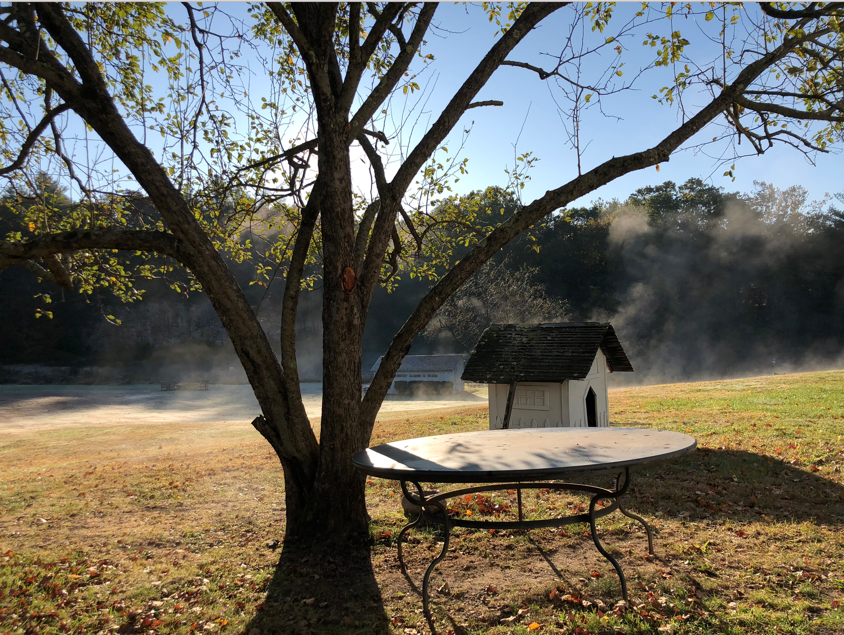 WBF Dog House & Morning Mist