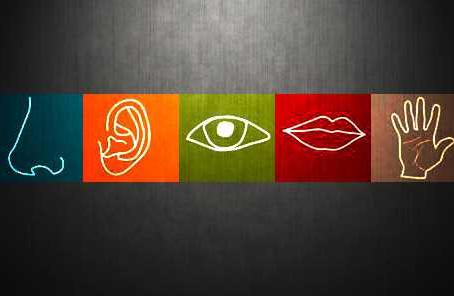 Aprenda a influência dos 5 sentidos para sua empresa! Marketing Sensorial. Parte III