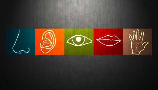 audicao marketing sensorial clientes consultoria empresa