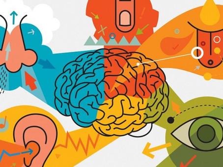 Os 5 sentidos e sua empresa! Marketing Sensorial. Parte I