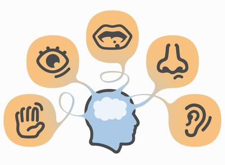 Aprenda a influência dos 5 sentidos para sua empresa! Marketing Sensorial. Parte II