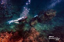 Fondo marino en Phi Phi