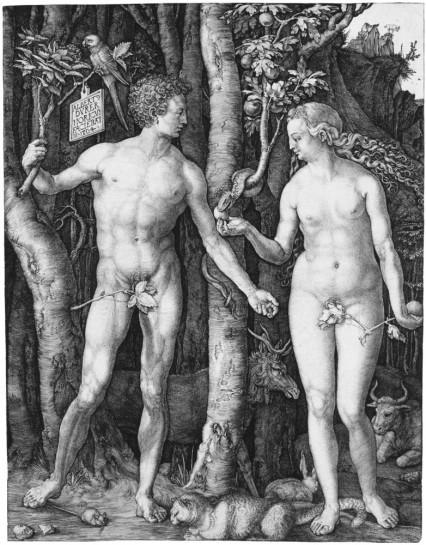 Pintura de Albrecht Dürer.
