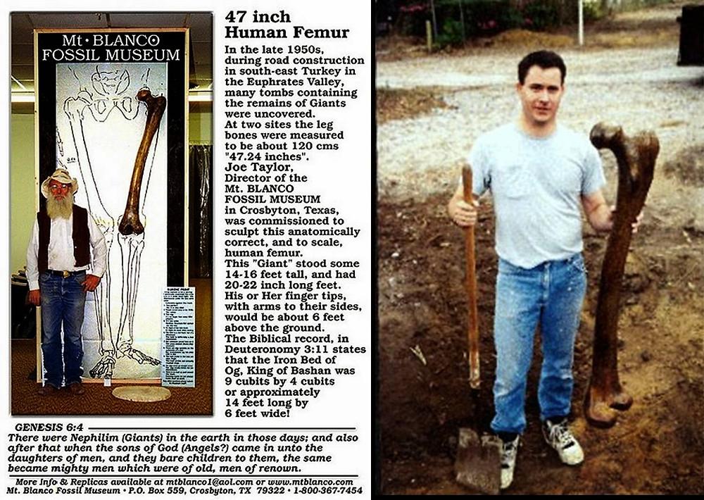 Fêmur gigante descoberto em Ohio, EUA.