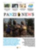 Panzi News Juin 2020.png