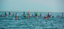 DV Paddlers from behind