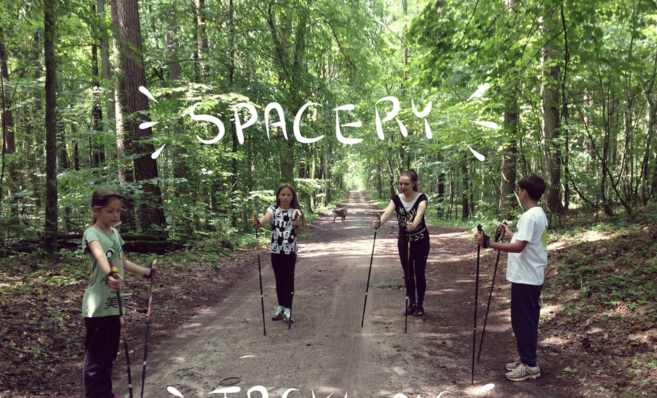 spacery w lesie