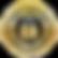 100% secure SSL logo