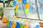 sydney yellow green blue baby boy party fresh