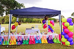 sydney dessert table candy bar fairy wings chairs tinker bell