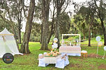 sydney royal picnic delicate gold dessert table soiree candy bar