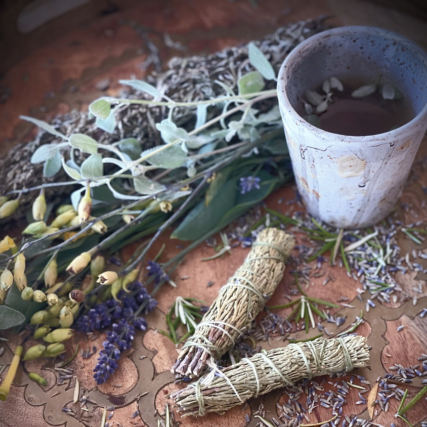 Wild Foraging for Edible and Medicinal Plants