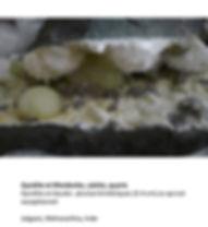 gyrolite et mordenite calcite quartz-.jp
