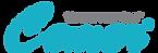logo_ing.png