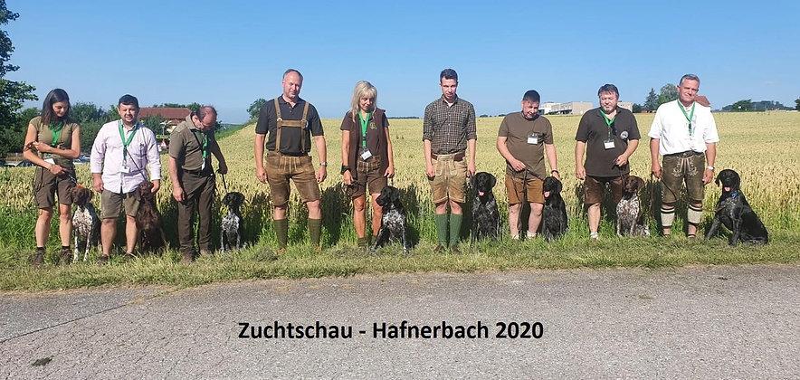 K1024_Zuchtschau Hafnerbach besser.JPG