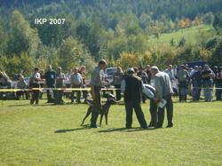 IKP2007