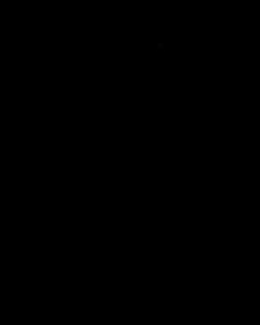 Vernicia fordii - source of tung oil