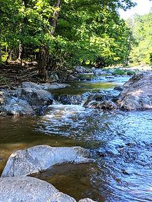 Eno River scenery