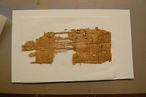 papyrus1.JPG