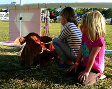 2 girls calf.jpg