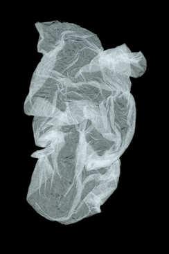 plastic jellyfish.