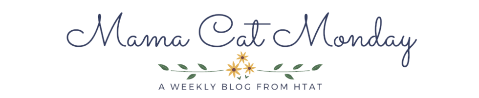 Mama Cat Monday - Blog Header