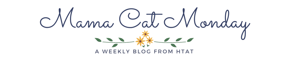 Mama Cat Header - A Weekly Blog From HTAT