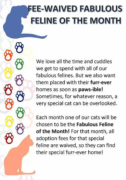 Fabulous Feline.jpg